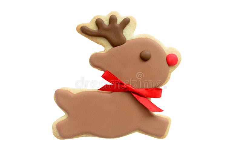 Μπισκότο ταράνδων του Rudolf στοκ φωτογραφία με δικαίωμα ελεύθερης χρήσης