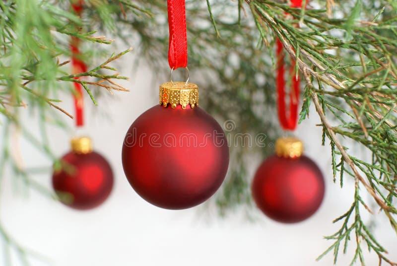 Μπιχλιμπίδια Χριστουγέννων στοκ εικόνες