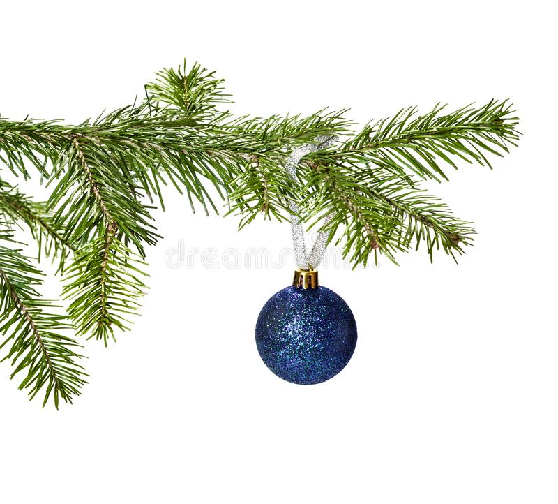 Μπλε ένωση διακοσμήσεων σφαιρών Χριστουγέννων στον κλάδο πεύκων στοκ φωτογραφία με δικαίωμα ελεύθερης χρήσης