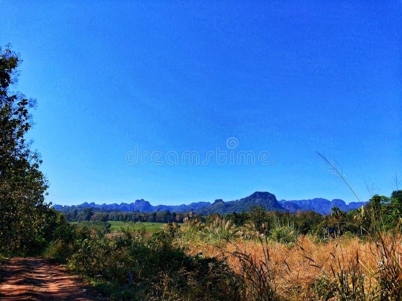 Μπλε βουνό ουρανού δέντρων στοκ φωτογραφία με δικαίωμα ελεύθερης χρήσης