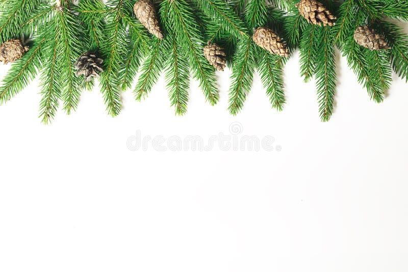 μπλε γυαλί σύνθεσης Χριστουγέννων μπιχλιμπιδιών Κλάδος χριστουγεννιάτικων δέντρων, κώνοι πεύκων, κλάδοι έλατου στο άσπρο υπόβαθρο στοκ εικόνες
