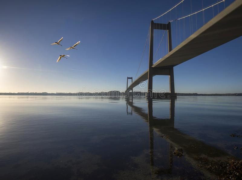 Μπλε δανική γέφυρα αναστολής ουρανού στοκ φωτογραφία