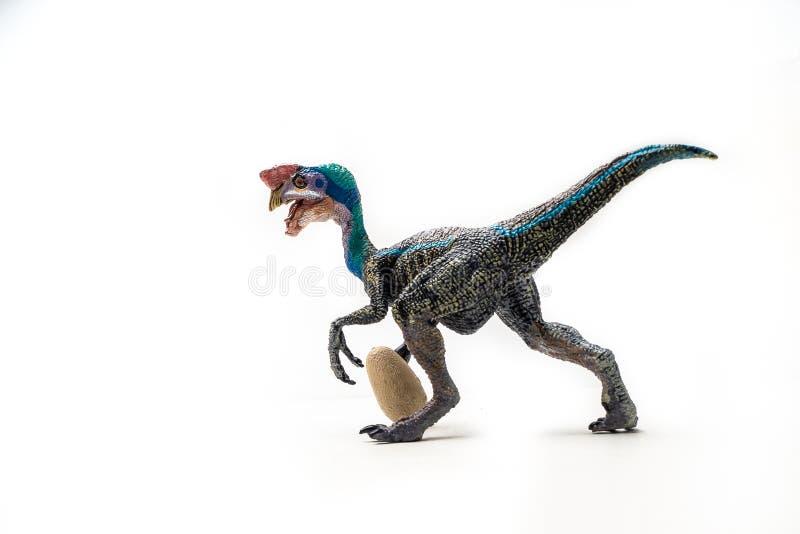 Μπλε δεινόσαυρος Oviraptor στο άσπρο υπόβαθρο στοκ φωτογραφίες