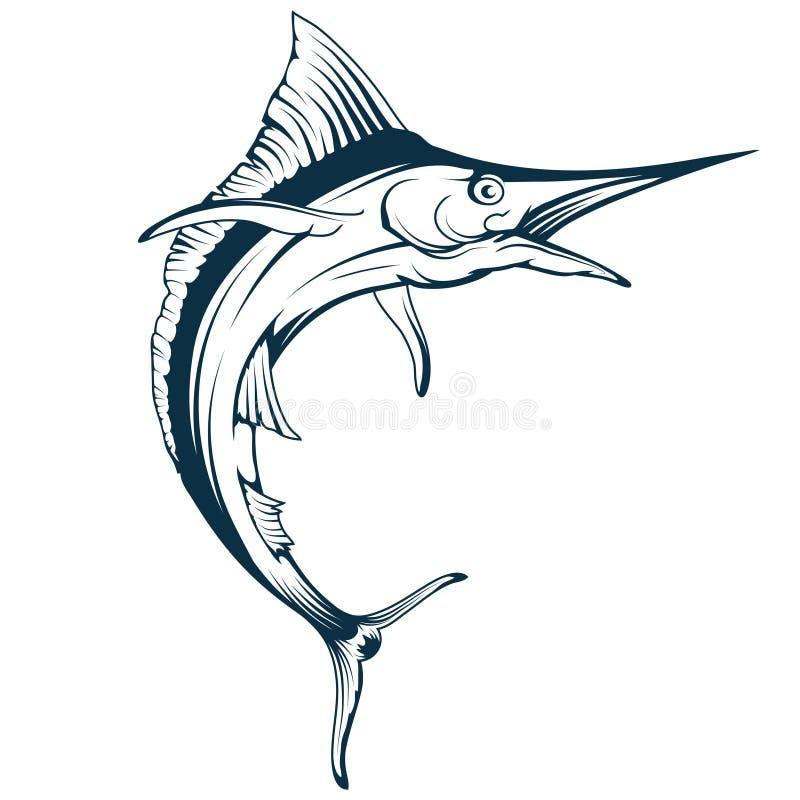 Μπλε διανυσματικό σχέδιο ψαριών μαρλίν, σκίτσο σχεδίων ψαριών μαρλίν στην πλήρη αύξηση, ψάρια μαρλίν σε γραπτό ελεύθερη απεικόνιση δικαιώματος
