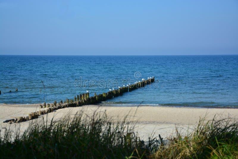 Μπλε θάλασσα και αμμώδης παραλία στοκ φωτογραφία