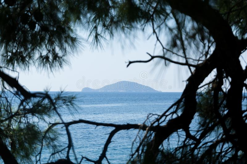 Μπλε θαλάσσιο νερό και νησί χελωνών της Ελλάδας μέσω των κλάδων των δέντρων στοκ φωτογραφία