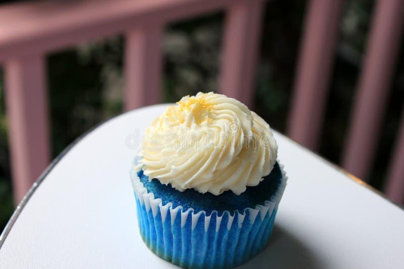 Μπλε καρύδα cupcake στοκ εικόνες