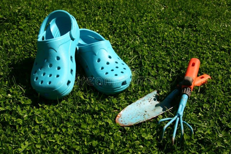 μπλε κηπουρική στοκ φωτογραφία με δικαίωμα ελεύθερης χρήσης