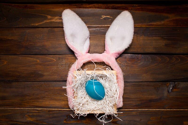 Μπλε κοτόπουλο, βαμμένο αυγό για τις διακοπές Πάσχας σε ένα κιβώτιο σε ένα ξύλινο υπόβαθρο έξω-κοιτάγματος με τα ρόδινα αυτιά κου στοκ φωτογραφίες με δικαίωμα ελεύθερης χρήσης