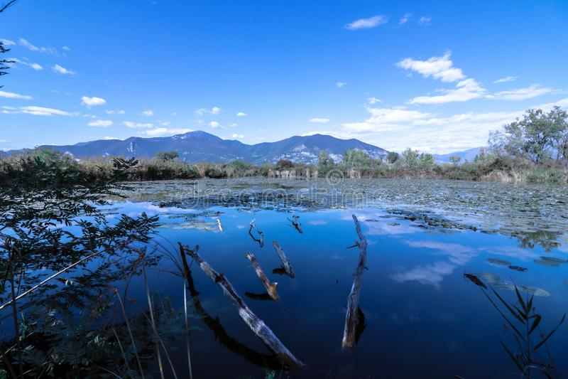 Μπλε λίμνη στοκ εικόνα
