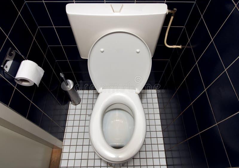 μπλε λευκό τουαλετών στοκ εικόνες