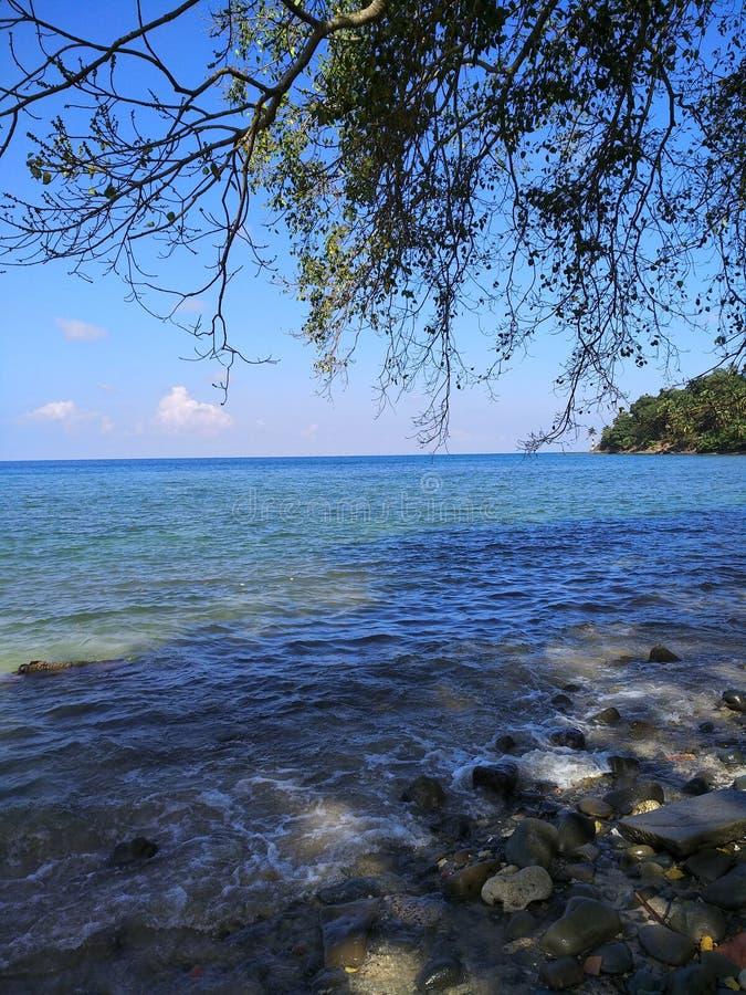 Μπλε ομορφιά στοκ φωτογραφία με δικαίωμα ελεύθερης χρήσης