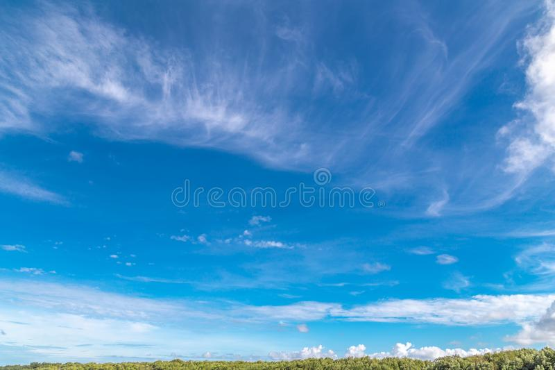 Μπλε ουρανός και όμορφο σύννεφο με τα δέντρα και το χαμόκλαδο στοκ φωτογραφίες με δικαίωμα ελεύθερης χρήσης