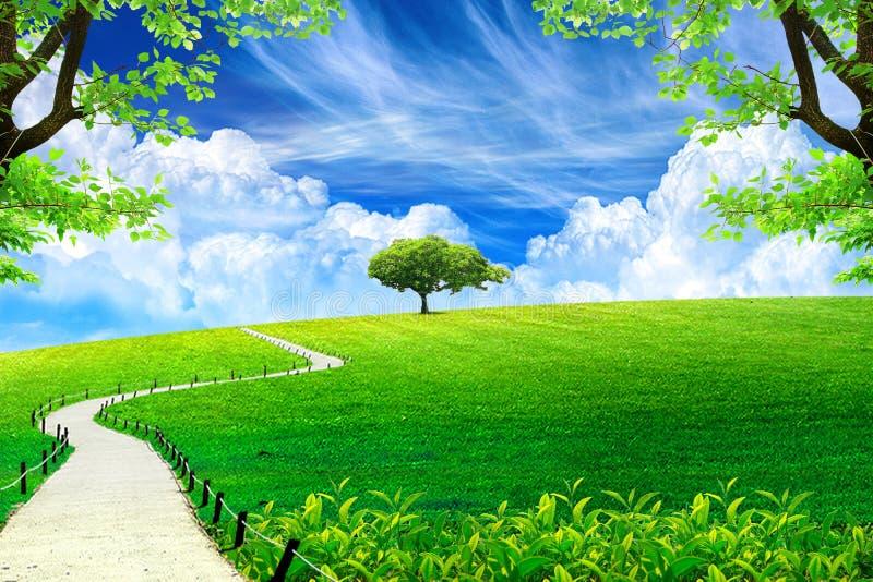 Μπλε ουρανός με την ηλιοφάνεια και τον πράσινο χορτοτάπητα στοκ φωτογραφία με δικαίωμα ελεύθερης χρήσης