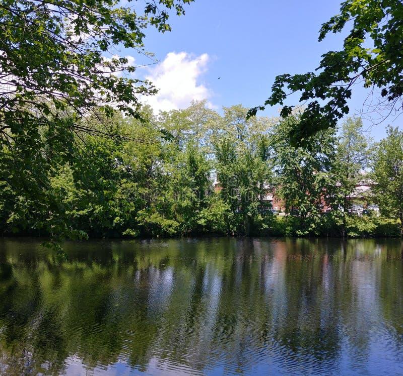 Μπλε ουρανός στη λαστιχένια λίμνη νημάτων σε Easthampton, Μασαχουσέτη στοκ φωτογραφία με δικαίωμα ελεύθερης χρήσης