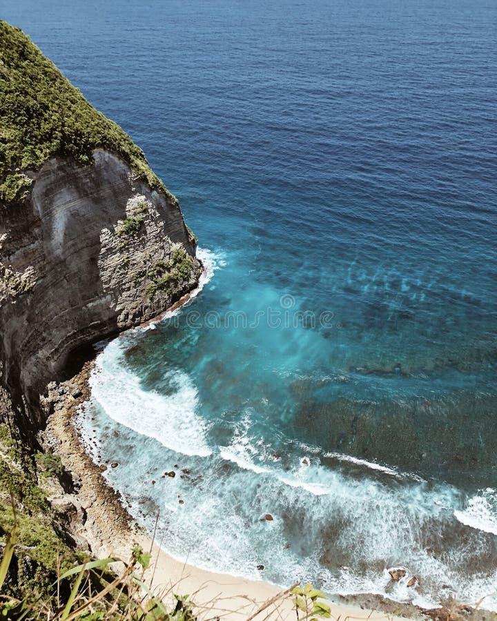 μπλε ουρανός φοινικών τοπίων ωκεάνιος στοκ εικόνα
