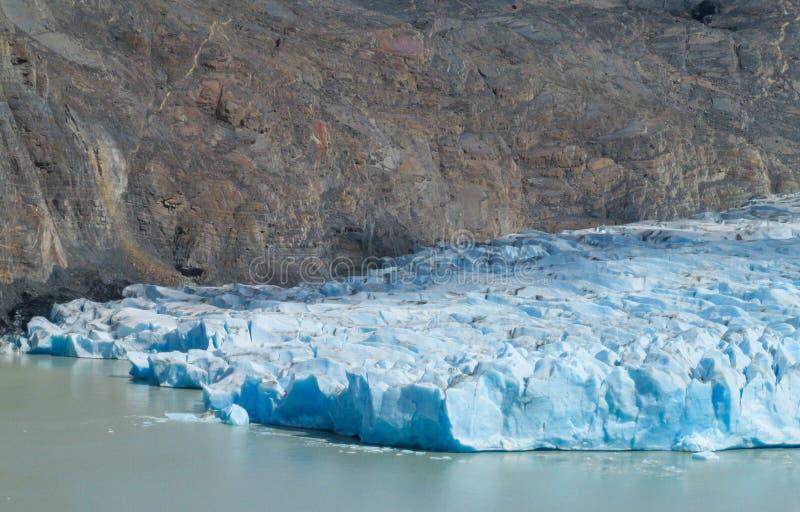 Μπλε παγόβουνα παγετώνων πάγου patagonian στο νερό λιμνών στοκ φωτογραφία