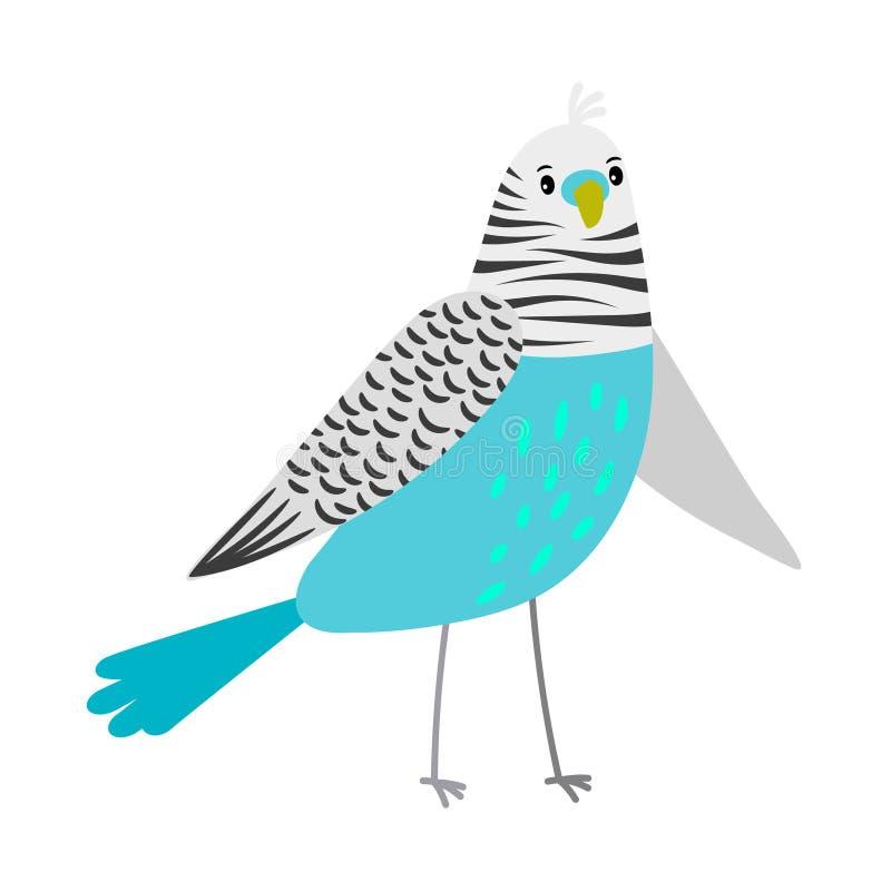 μπλε παπαγάλος κινούμεν&ome διανυσματική απεικόνιση