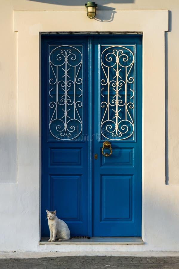 Μπλε παραδοσιακή πόρτα και μια άσπρη γάτα στοκ εικόνα