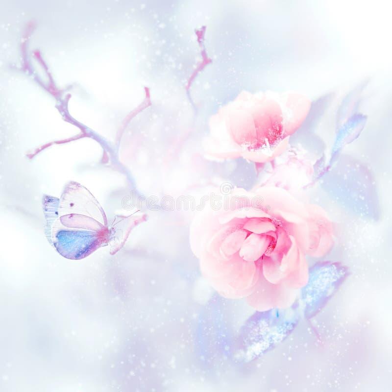 Μπλε πεταλούδα στο χιόνι στα ρόδινα τριαντάφυλλα σε έναν κήπο νεράιδων Καλλιτεχνική εικόνα Χριστουγέννων διανυσματική απεικόνιση