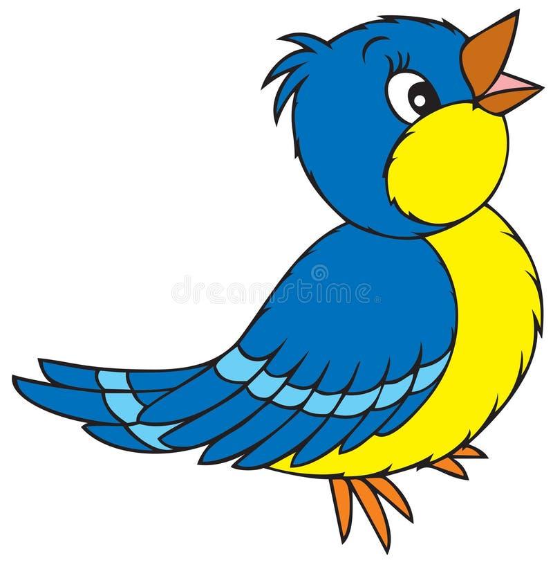 μπλε πουλιών ελεύθερη απεικόνιση δικαιώματος