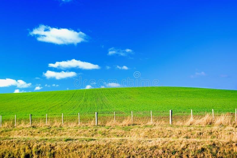 Download μπλε πράσινος ουρανός πε&d στοκ εικόνα. εικόνα από αγρόκτημα - 2225973