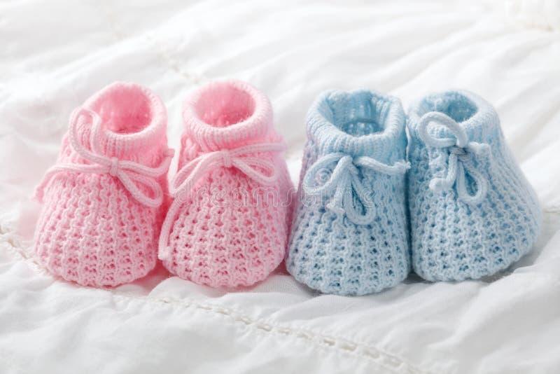μπλε ροζ λειών μωρών στοκ εικόνα με δικαίωμα ελεύθερης χρήσης