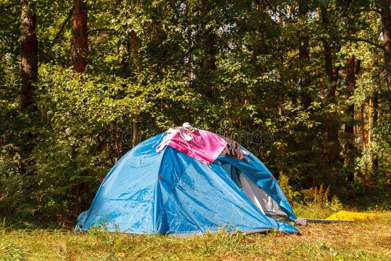 Μπλε σκηνή στρατοπέδευσης στο δάσος στη φωτεινή ηλιόλουστη ημέρα στοκ εικόνα με δικαίωμα ελεύθερης χρήσης