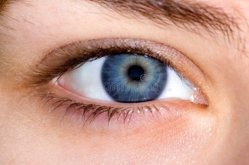 μπλε στενό θηλυκό ματιών ε&p στοκ εικόνα