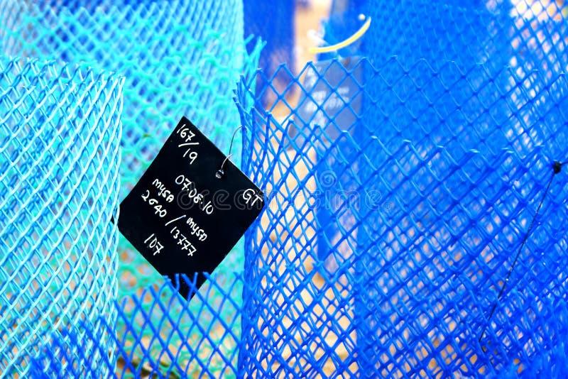 Μπλε σωλήνες καλωδίων και μια προσδιορισμός-ετικέτα για να προστατεύσει τις φωλιές στοκ εικόνα