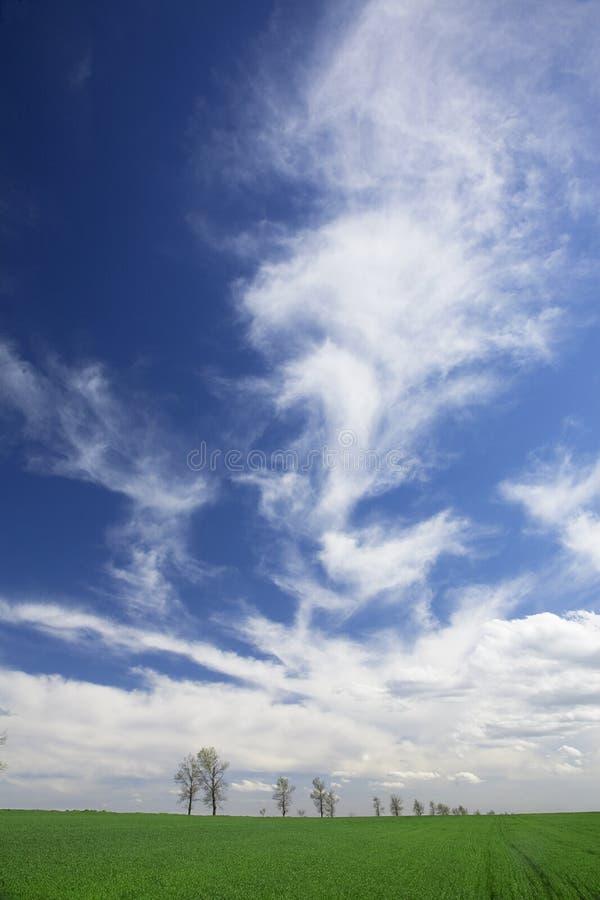 μπλε σύννεφων λευκό άνοιξ&et στοκ φωτογραφία με δικαίωμα ελεύθερης χρήσης