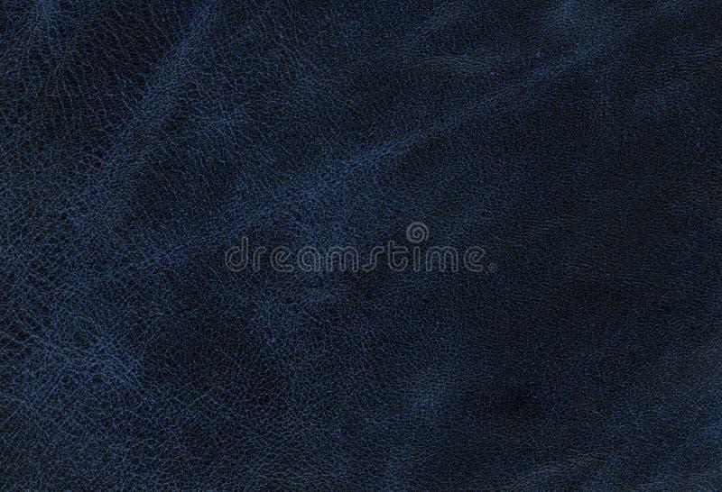 Μπλε σύσταση δέρματος στοκ φωτογραφία