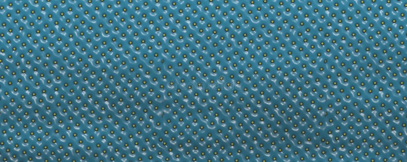 Μπλε υπόβαθρο δερμάτων φραουλών κινηματογραφήσεων σε πρώτο πλάνο ελεύθερη απεικόνιση δικαιώματος