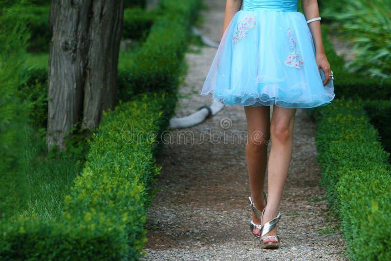 μπλε φόρεμα στοκ εικόνα με δικαίωμα ελεύθερης χρήσης
