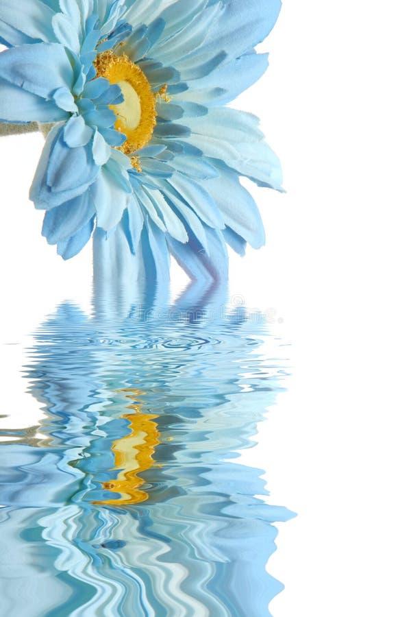 μπλε ύδωρ αντανάκλασης μα& στοκ φωτογραφίες