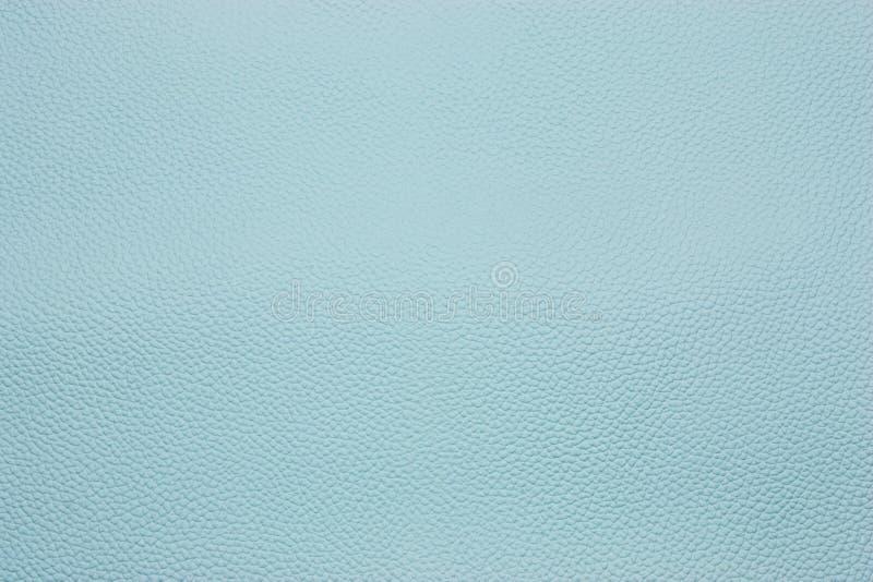 Download μπλε στοκ εικόνα. εικόνα από βακκινίων, φυσικός, grunge - 13187445