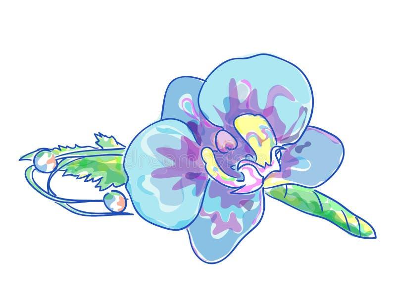 μπλε orchids μπουτονιερών γάμος απεικόνιση αποθεμάτων