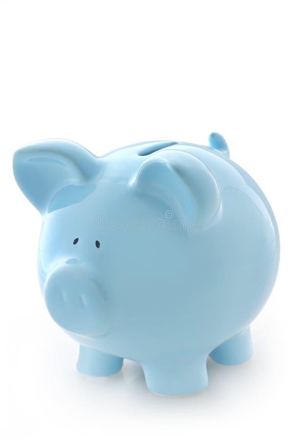 μπλε piggy τραπεζών στοκ φωτογραφία