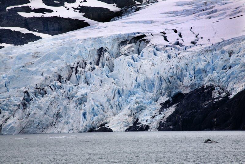 μπλε portage λιμνών παγετώνων αγκυροβολίου της Αλάσκας στοκ φωτογραφία