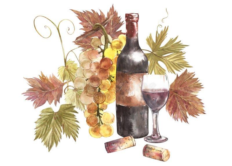 Μπουκάλια και ποτήρια του κρασιού και κατάταξη των σταφυλιών, που απομονώνεται στο λευκό Συρμένη χέρι απεικόνιση watercolor διανυσματική απεικόνιση