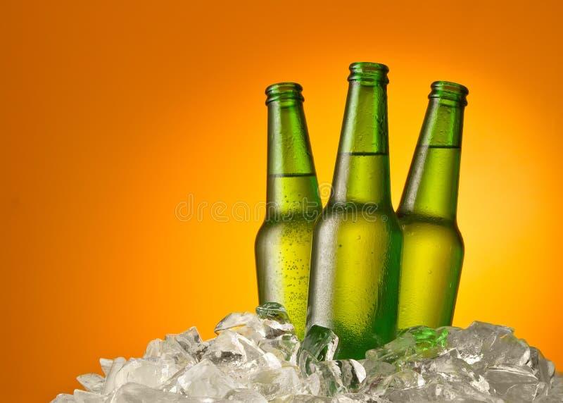 μπουκάλια μπύρας τρία στοκ εικόνα με δικαίωμα ελεύθερης χρήσης