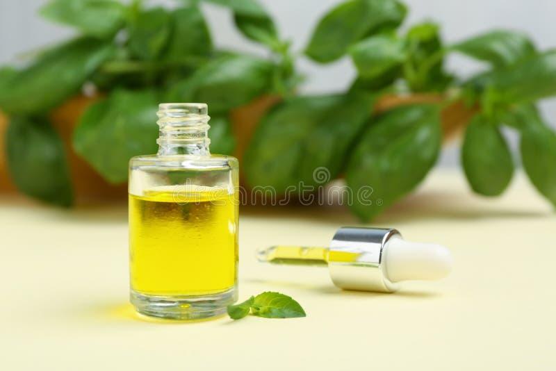 Μπουκάλι γυαλιού με το πετρέλαιο βασιλικού, τα φύλλα και dropper στοκ εικόνες