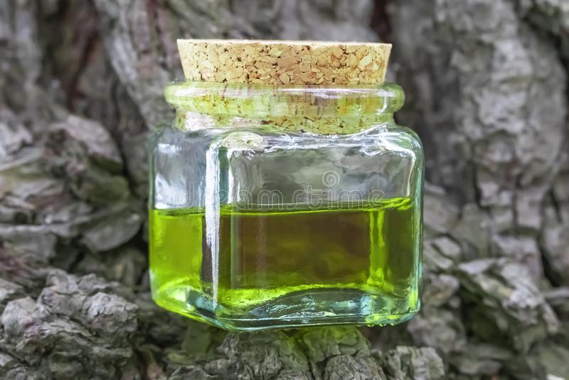 Μπουκάλι γυαλιού με το φελλό ΚΑΠ με το πράσινος-κίτρινο πετρέλαιο νέκταρ Τοποθετημένος στο φλοιό του κωνοφόρου ξύλου στοκ φωτογραφία