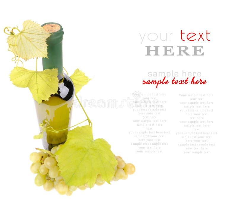 Μπουκάλι κρασιού με το πράσινο φύλλο σταφυλιών στοκ εικόνες με δικαίωμα ελεύθερης χρήσης
