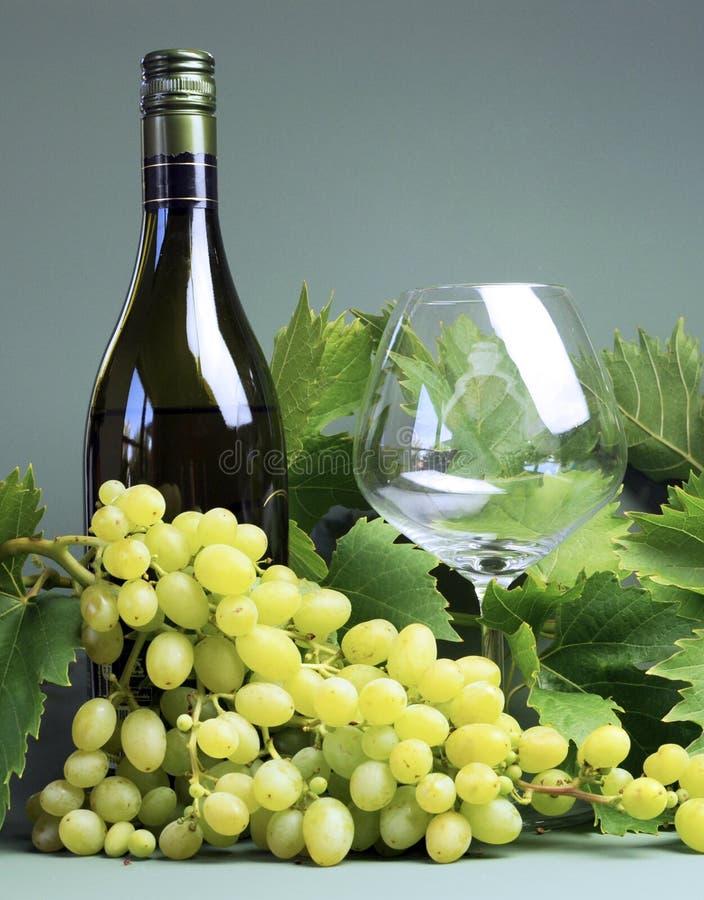 Μπουκάλι του άσπρου κρασιού, γυαλί κρασιού με μια μεγάλη δέσμη των σταφυλιών και των αμπέλων - κατακόρυφος. στοκ εικόνα
