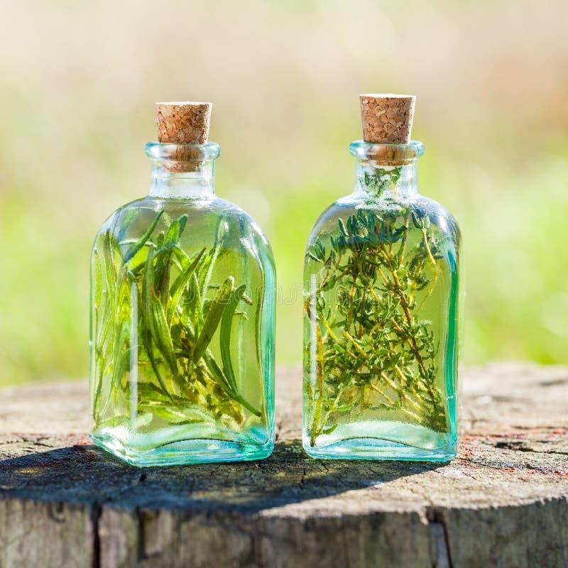Μπουκάλια του θυμαριού και ελαίου ή της έγχυσης δεντρολιβάνου του ουσιαστικού υπαίθρια στοκ φωτογραφία με δικαίωμα ελεύθερης χρήσης