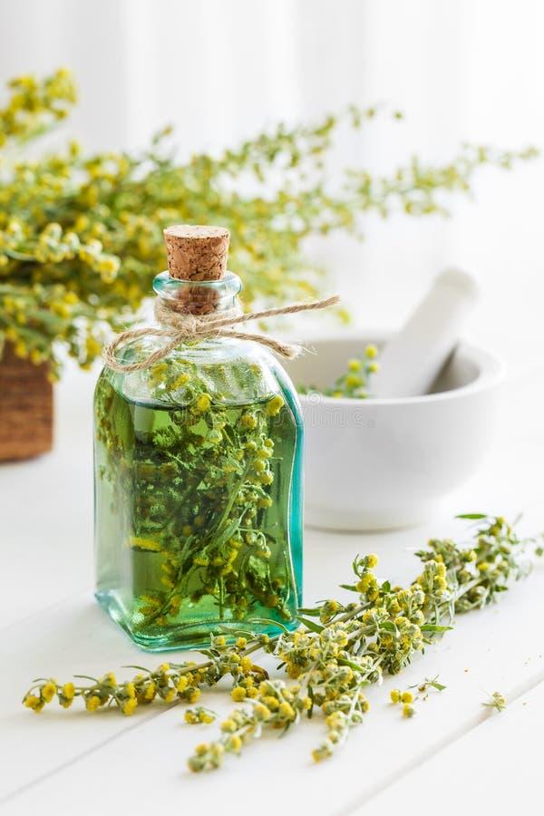 Μπουκάλι απόντος ή tincture των χορταριών τραχουριού και θεραπείας στοκ εικόνα