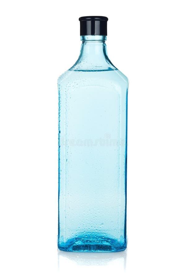 Μπουκάλι τζιν γυαλιού στοκ φωτογραφία με δικαίωμα ελεύθερης χρήσης