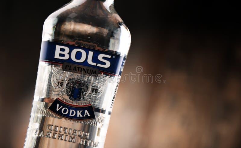 Μπουκάλι της βότκας Bols στοκ εικόνα με δικαίωμα ελεύθερης χρήσης