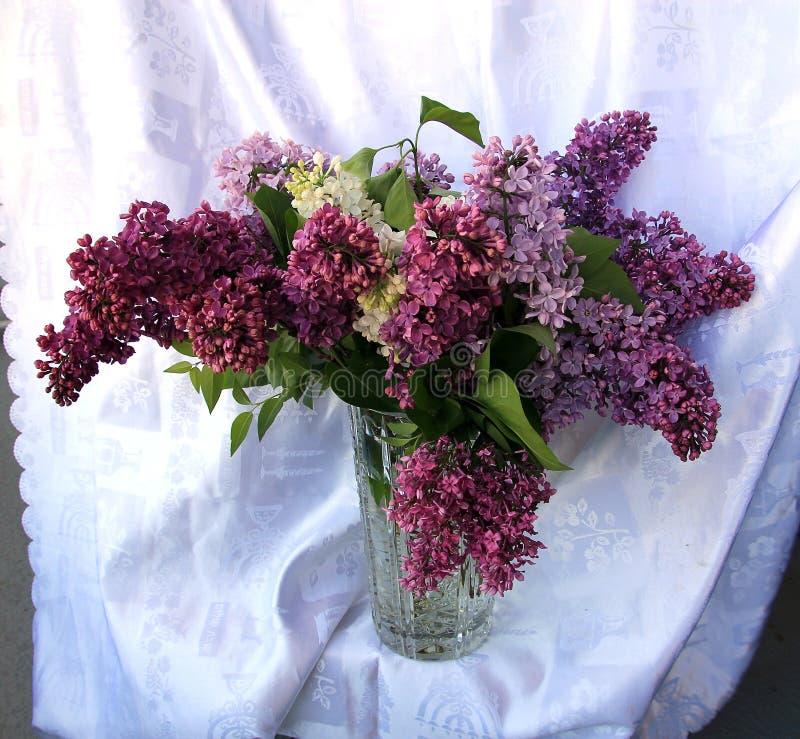 Μπουκέτο λουλουδιών της πορφυρής πασχαλιάς στοκ φωτογραφία με δικαίωμα ελεύθερης χρήσης